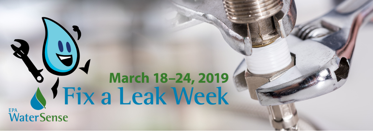 DCPSC Promotes EPA's Fix a Leak Week from March 20th to 26th